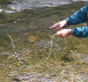 The Hands of a Flyfisher